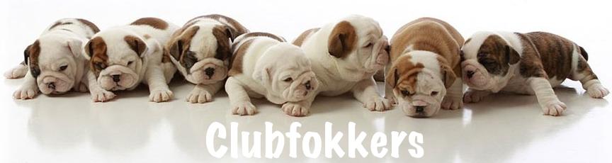 puppierij clubfokkers