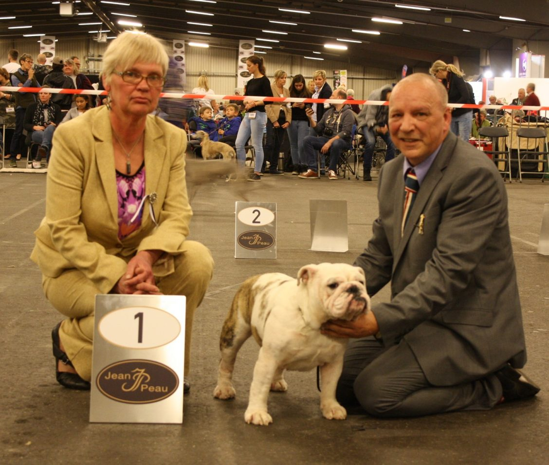 15-04-2017-int-dogshow-goes-nl-1-excellent-intermediare-class-cac-cacib-bos-judge-mrs-a-p-parn-ee