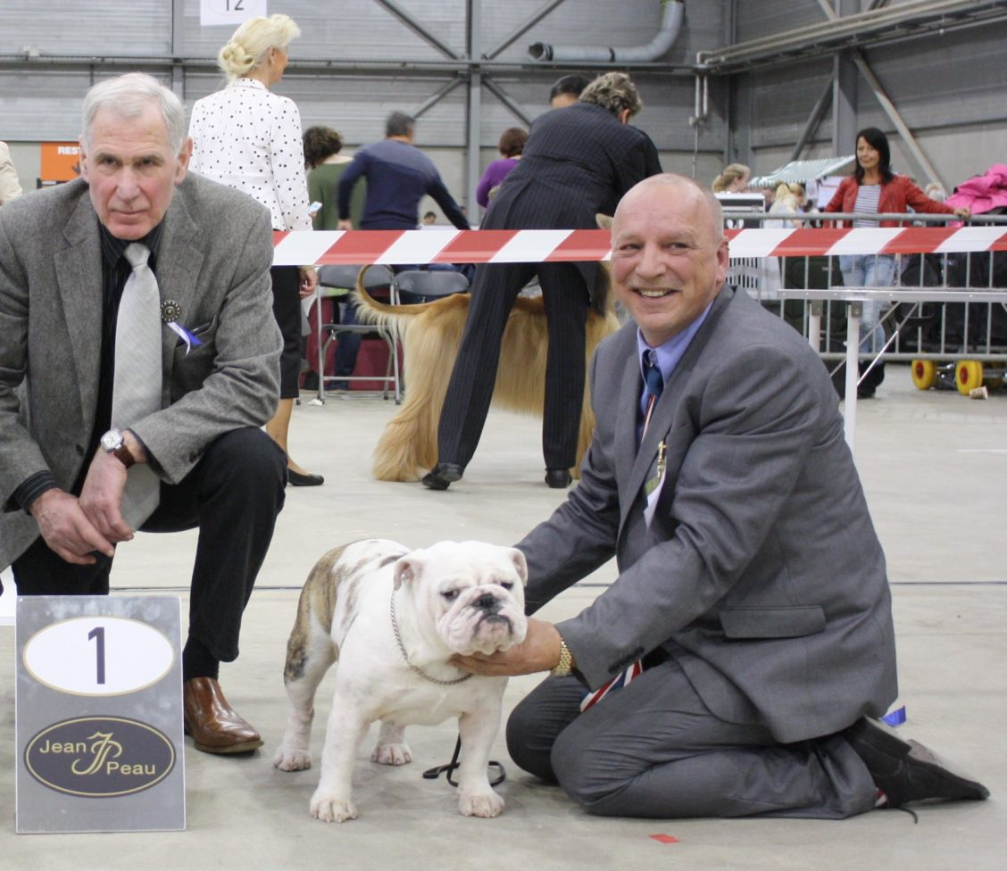16-04-2017-int-dogshow-goes-nl-1-th-excellent-intermediare-class-cac-cacib-bob-judge-mr-jan-liet-nl